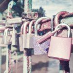 Programy lojalnościowe w sklepach internetowych